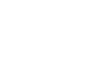 screen-advantage-logo